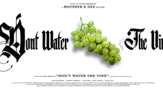 dontwaterthevine